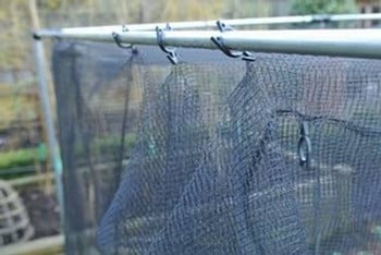 Harrod Stormproof (Natural 1.5m H) Vegetable Cage
