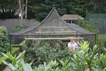 Peak Roof Steel Fruit Cage