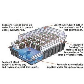 80 cell Self-Watering Seed Starting System
