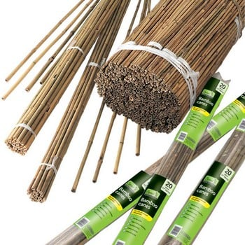 Bamboo Canes - 1.8m Long (20 Pack)