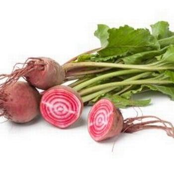 Beetroot - Chioggia (10 plants) Organic