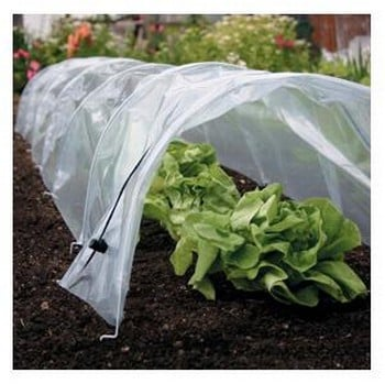 Easy Poly Tunnels (giant)