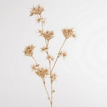 Gold Allium with Glitter by Sia