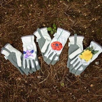 Gold Leaf RHS Collection Ladies Gloves