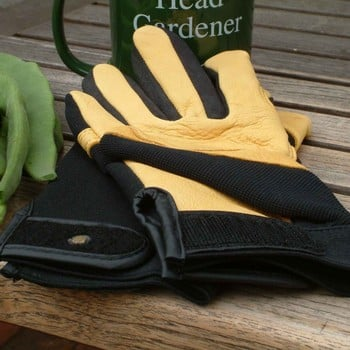 Gold Leaf Soft Touch Gloves