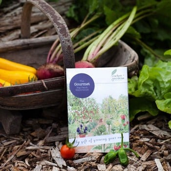 Gourmet Veg Patch Gift Voucher