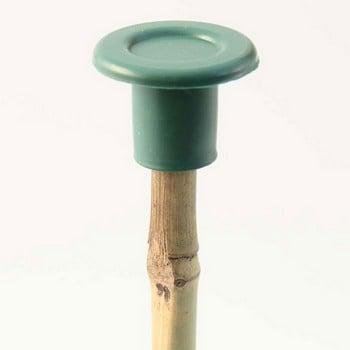 Green Cane Caps