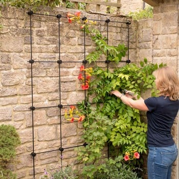 Harrod Build Your Own Trellis