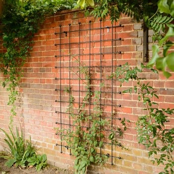 Harrod Decorative Wall Trellis Panels - Straight Trellis