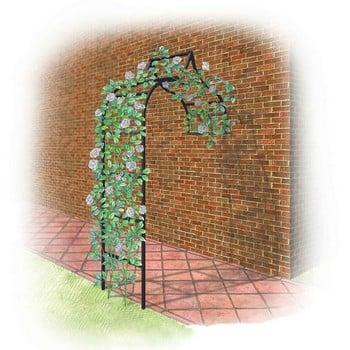 Harrod Ogee Wall Arch