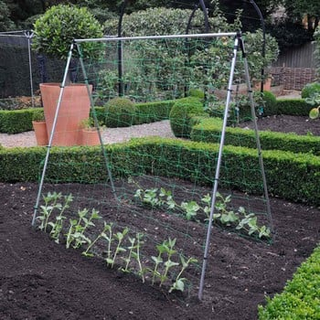 Harrod Slot & Lock® Bean & Pea Frames