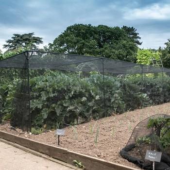 Harrod Slot & Lock® Black Vegetable Cage (1.5m H)