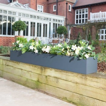 Harrod Trough Metal Planters - Anthracite Grey