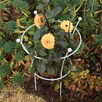 Harrod Trumpet Peony Plant Support - Silk Grey