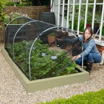Hoops & Butterfly Net Cover for Superior Metal Beds
