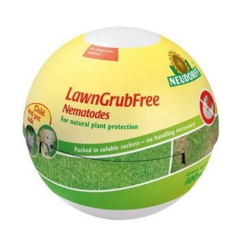 LawnGrubFree Nematodes