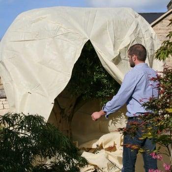 Mammoth Plant Jacket