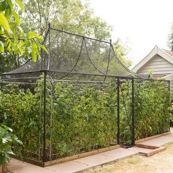 Pavilion Fruit Cage