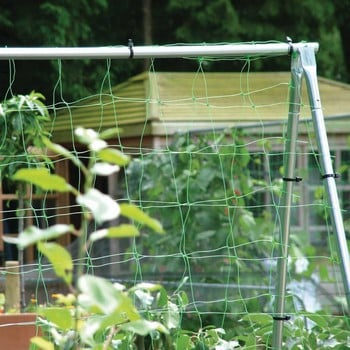 Pea and Bean Netting