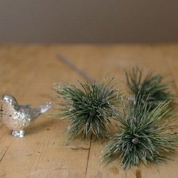 Pine Spray by Sia