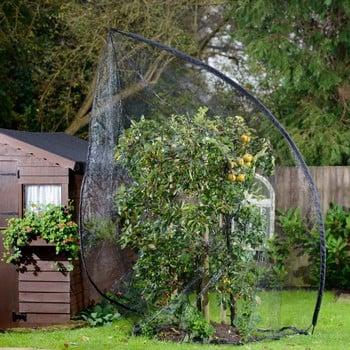 Popadome Fruit Tree Cover (3.5m high)