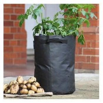 Potato Planting Bags