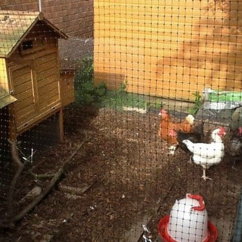 Poultry Extra Heavy-Duty Side Netting