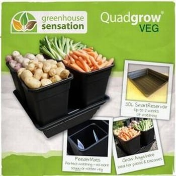 Quadgrow 18ltr Vegetable Planter