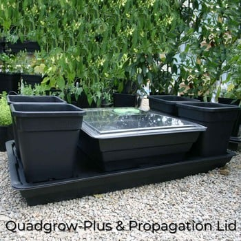 Quadgrow Plus Vegetable Planter