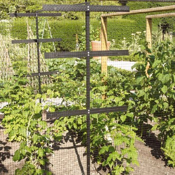 Raspberry Protection and Support Frame