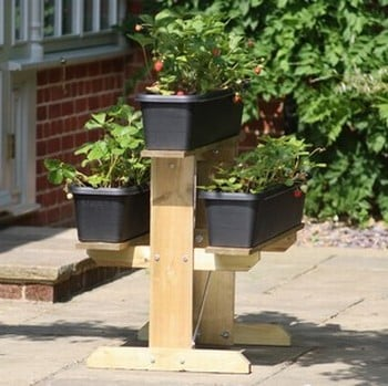 Strawberry Raised Growing Table