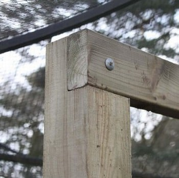 Timber Wire Frame
