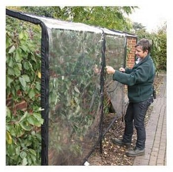 Wall & Fence Fruit Tree Protector