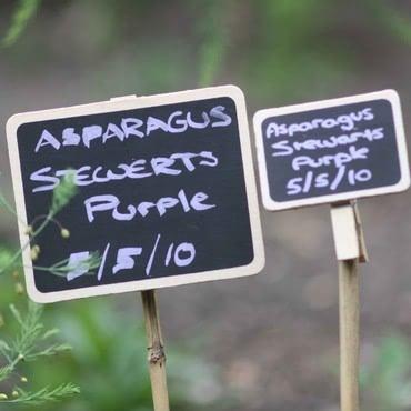 Blackboard Plant Label Clips