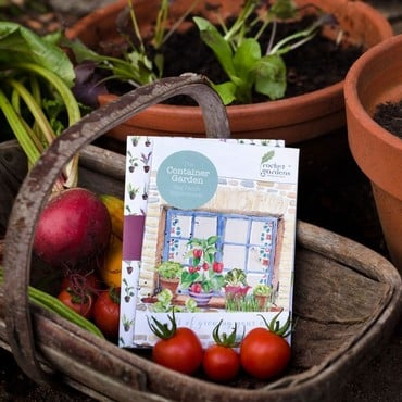 Container Garden Veg Patch Gift Voucher