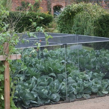 Harrod Slot & Lock® Vegetable Cage (1.2m H)