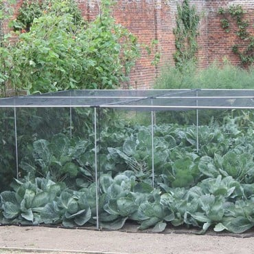Harrod Slot & Lock® Vegetable Cage (1.5m H)