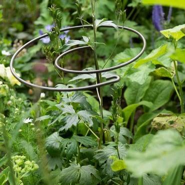 Harrod Spiral Plant Support