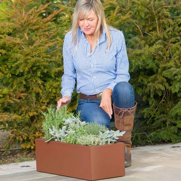 Harrod Trough Metal Planters - Corten Effect