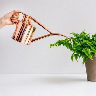 Haws Copper Indoor and Seedling Watering Can