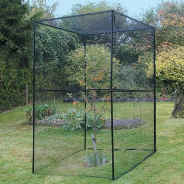 Heavy Duty Steel Cherry Tree Cage