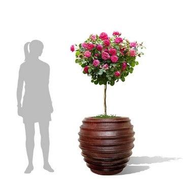 Irun Ironstone Pot