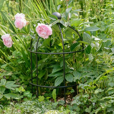 Lobster Pot Plant Support - Matt Black