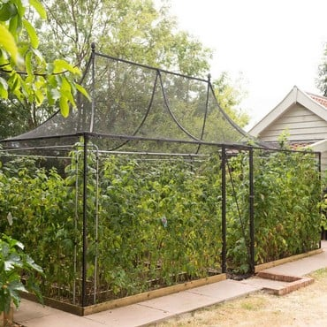 Pavilion Fruit Cage