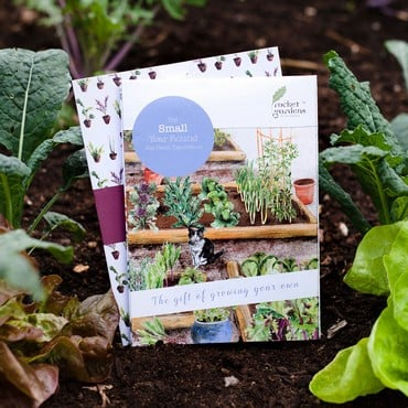Small Year Round Veg Patch Gift Voucher