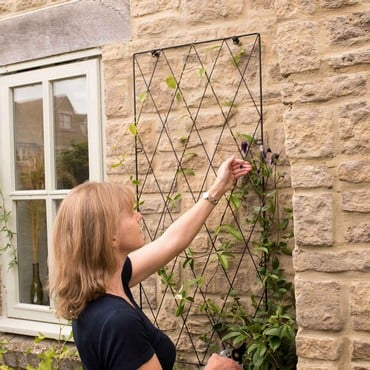 Standard Lattice Wall Trellis Panel x 2