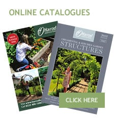 View New Brochures