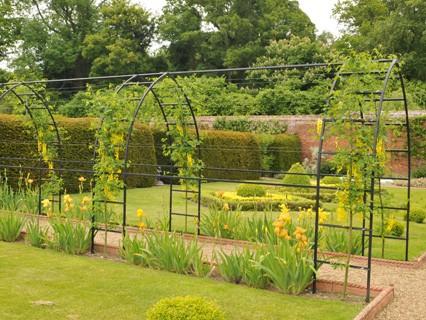 Garden Arches Pergolas Obelisks Harrod Horticultural