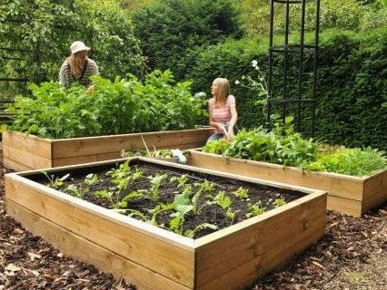 Small Garden Plots