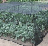 Low Height Vegetable & Fruit Cages